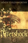 Aftershock: An Aftermath Novella by Sandy Goldsworthy